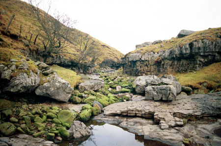 Geological significance of dolyhir and nash scar limestone