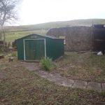 Rear garden shed