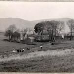 Bullpot_Leedsa_1933