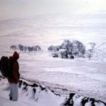 snow1976